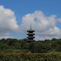 Photos: 吉備路五重の塔