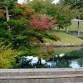写真: 秋の後楽園