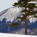 写真: 雪山