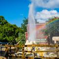 写真: Little Rainbow