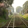 Photos: 緑の非電化複線区間 関東鉄道常総線