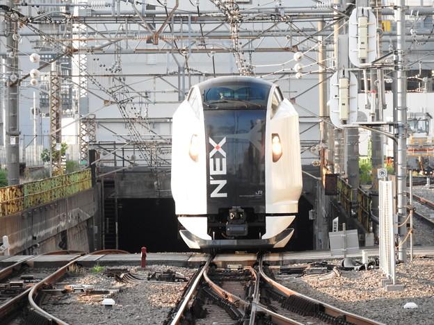 Photos: E259系特急成田エクスプレス52号