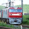 Photos: 金太郎22号機牽引高速貨物3050レ