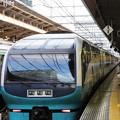 251系スーパービュー踊り子8号東京8番到着
