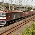 Photos: 金太郎5号機牽引高速貨物94レ宇都宮貨物(タ)2番進入