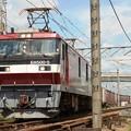 Photos: 金太郎5号機牽引高速貨物94レ宇都宮貨物(タ)2番発車