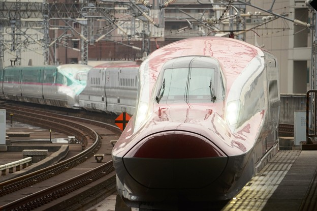 Photos: はやぶさ・つばさ19号仙台12番入線