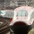 はやぶさ・つばさ19号仙台12番入線