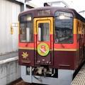Photos: わたらせ渓谷鐵道トロッコわっしー5号桐生1番にて