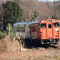 Photos: 下りカーブを行く烏山線キハ40