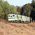 Photos: 築堤を上り森田トンネルに向かう烏山線キハ40