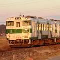 Photos: 夕陽色の烏山線キハ40