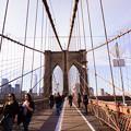 Photos: ブルックリン橋