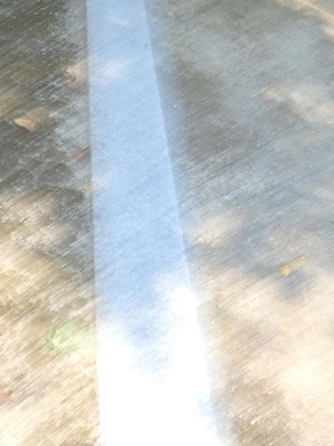 Photos: 白い線