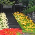 rs-160924_10_参道から山門を・SH(西方寺) (45)
