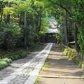 rs1-160926_99_中門への石畳・SH(寿福寺) (2)