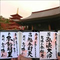 Photos: 高幡不動御朱印