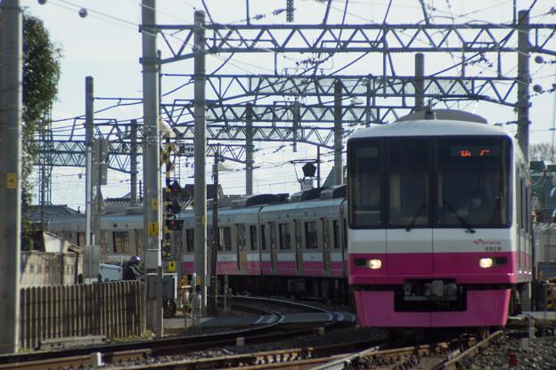 DSC01952