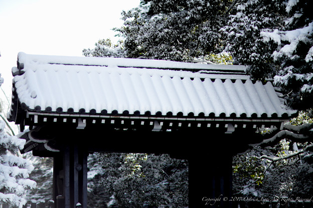京都御所-0172