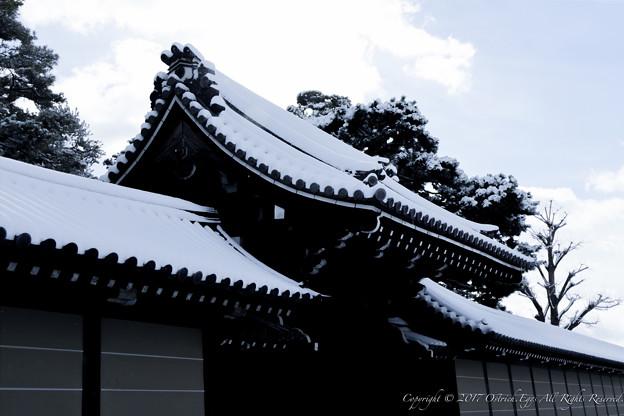 京都御所-0182