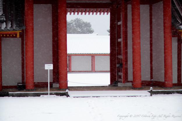 京都御所-0201