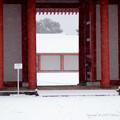 写真: 京都御所-0201