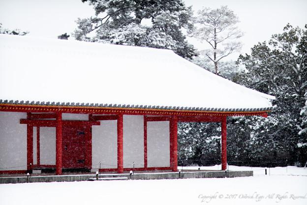 京都御所-0202