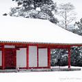 写真: 京都御所-0202