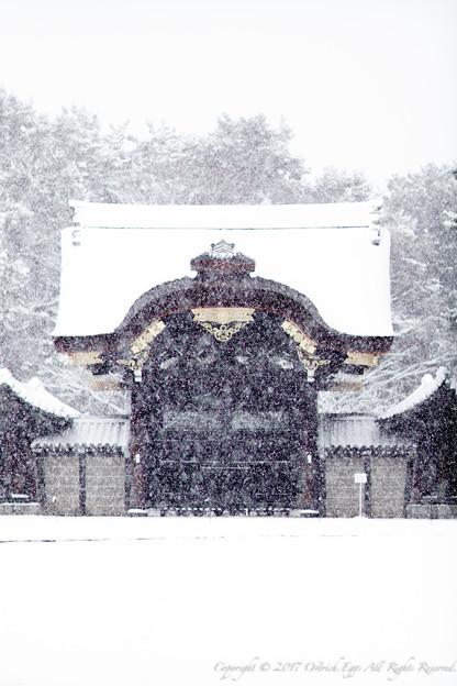 京都御所-0211