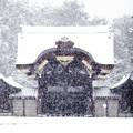 写真: 京都御所-0211