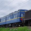 マヤ34-2009