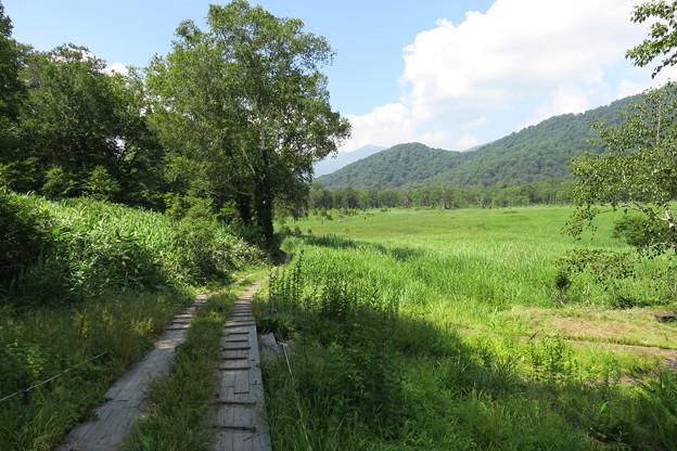 160805-67尾瀬・至仏山が見えてきました