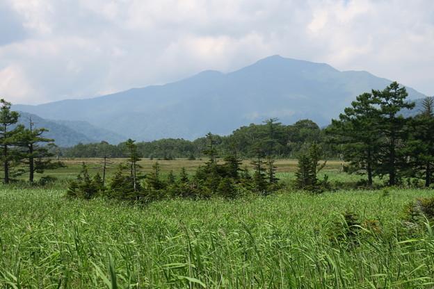 160805-69尾瀬・至仏山