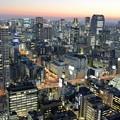 Photos: 東京夕景A