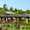 写真: 橋と・・・