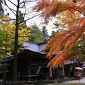 秋色の神社