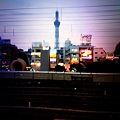 Photos: (10.09.19) 東京スカイツリー_IMG_0677