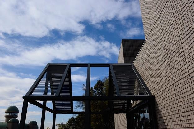 鳥の博物館_15128
