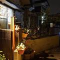 Photos: 夜の小路_16x13