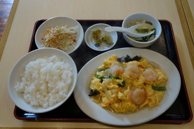 餃子太郎@東船橋DSC01913