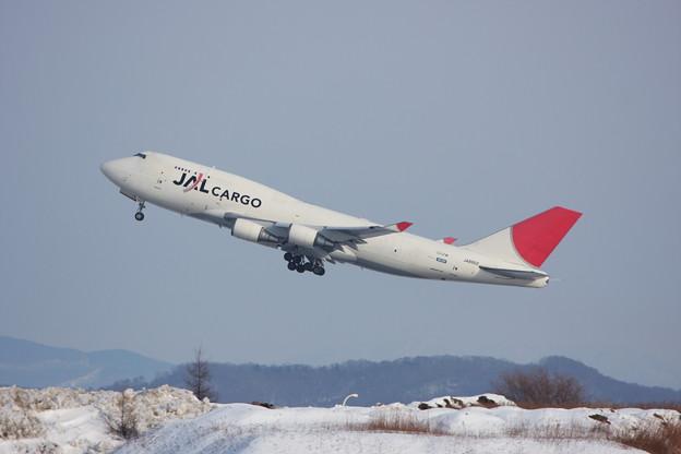 B747-446F JA8902 JALcargo 2010.01