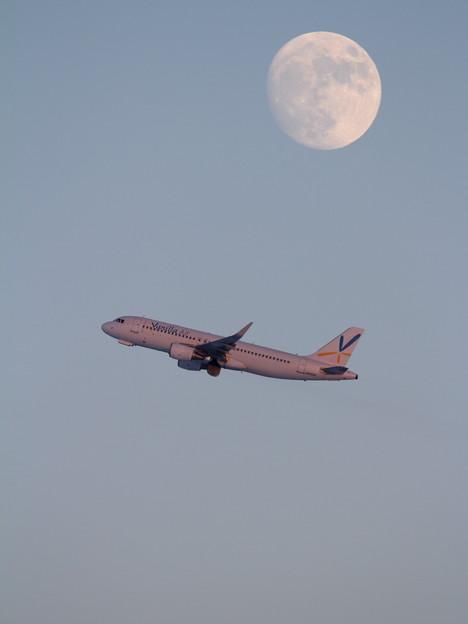 A320 VNLとお月さん