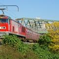 Photos: 3092レ【EF510-18牽引】