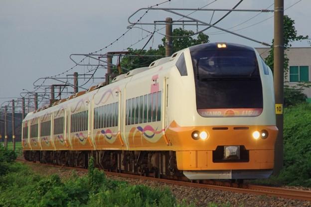 E653系1000番台U103編成 新発田駅前商店街ミステリー列車