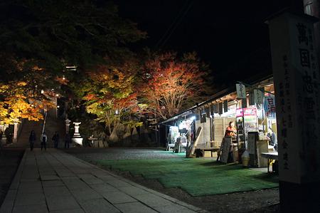 阿夫利神社下社の紅葉ライトアップ