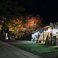 写真: 阿夫利神社下社の紅葉ライトアップ