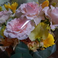 Photos: 旅立ちの花♪