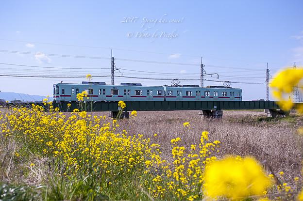 2017 西鉄甘木線