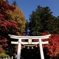 宝登山神社にお参り