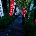 写真: 結構な急階段